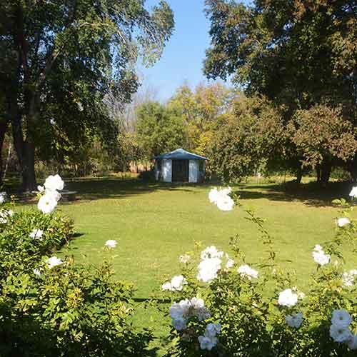 http://www.bailliesmanor.co.za/wp-content/uploads/2016/07/Front-Garden.jpg